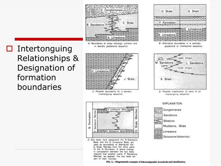 Intertonguing Relationships & Designation of formation boundaries
