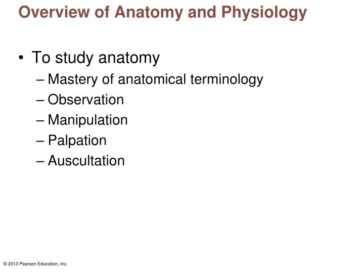 PPT - Overview of Anatomy and Physiology PowerPoint Presentation ...