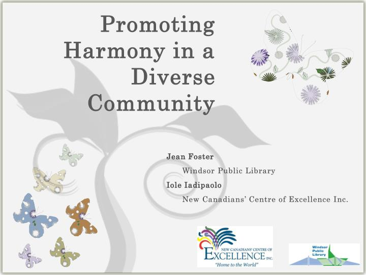 promoting harmony in a diverse community n.