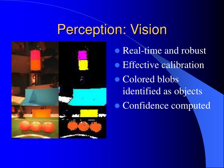 Perception: Vision