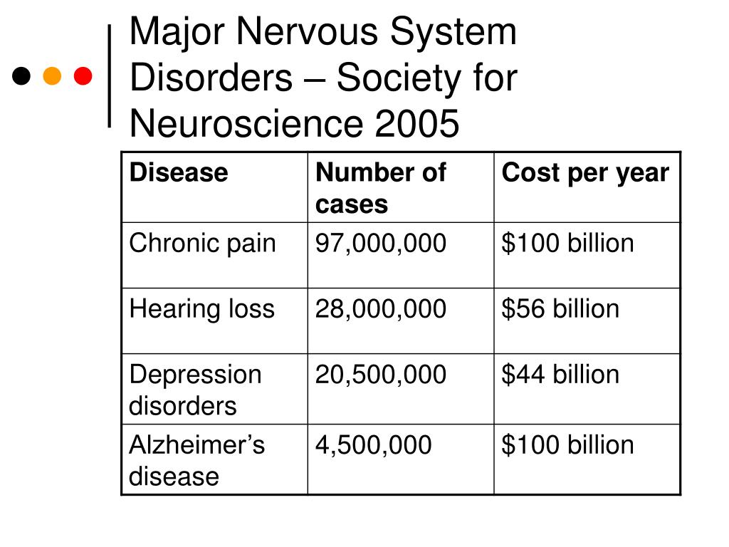 The Nervous System Brain Diseases  Major Nervous System Disorders