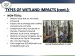 types of wetland impacts cont1