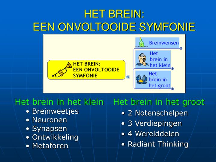 Het brein een onvoltooide symfonie