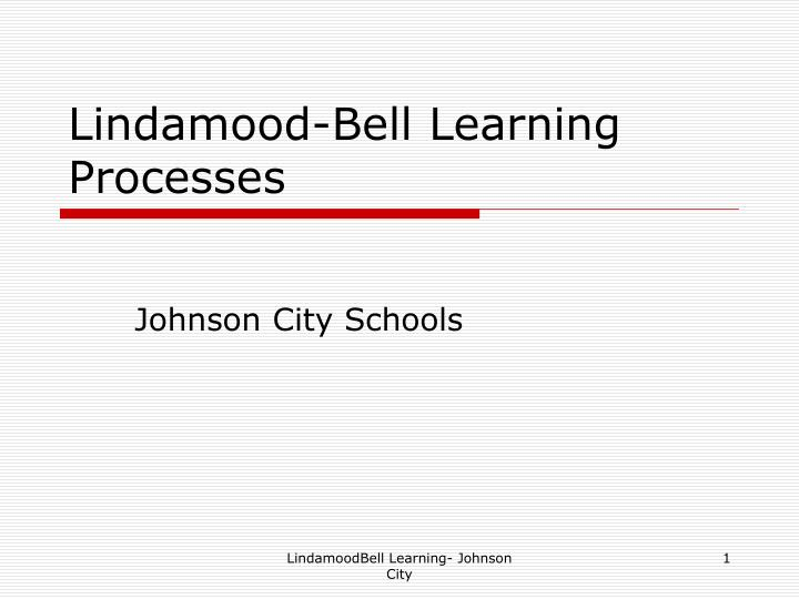 lindamood bell learning processes n.