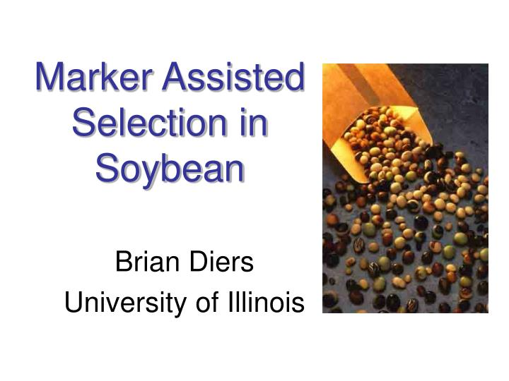marker assisted selection in soybean n.