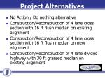 project alternatives
