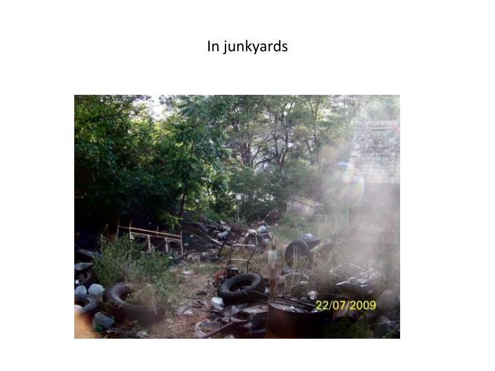 In junkyards
