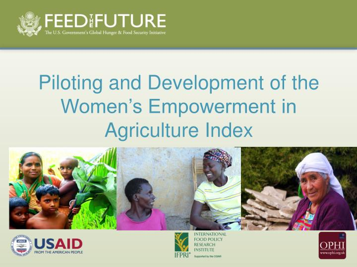 piloting and development of the women s empowerment in agriculture index n.