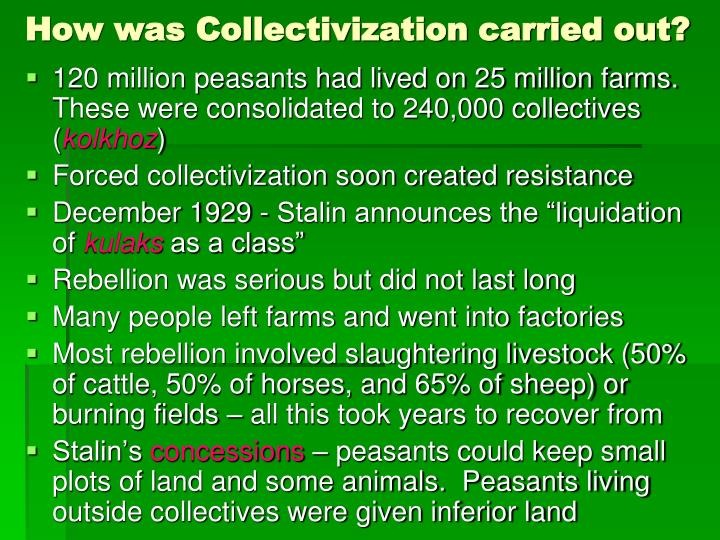 How was Collectivization carried out?