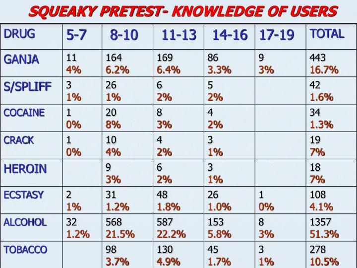 SQUEAKY PRETEST- KNOWLEDGE OF USERS