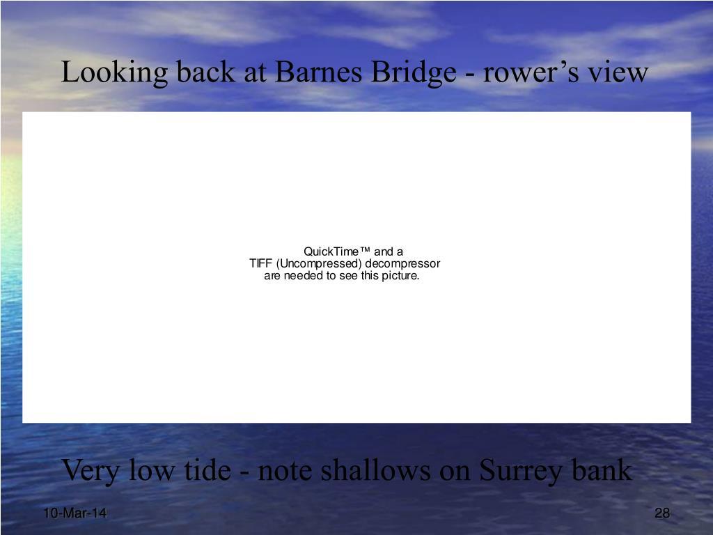 Looking back at Barnes Bridge - rower's view