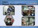 zappos pleasure passion and purpose
