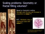 scaling problems geometry or fractal filling volumes