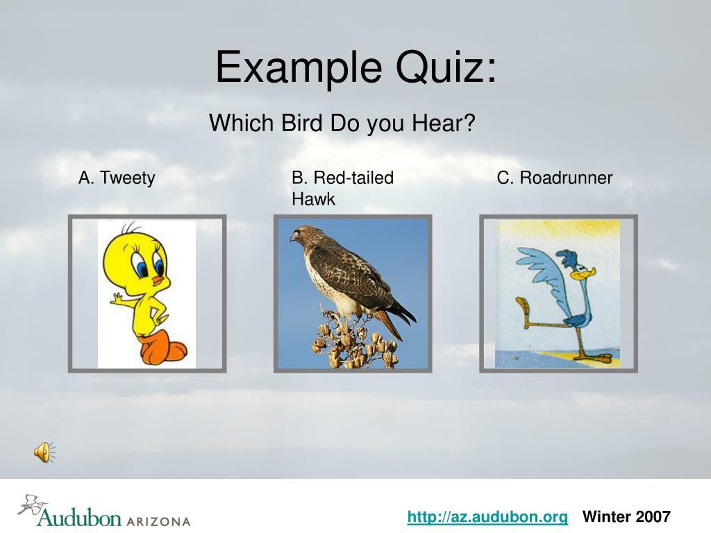 Example Quiz: