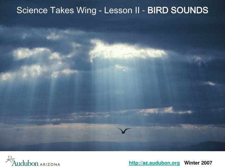 Science Takes Wing - Lesson