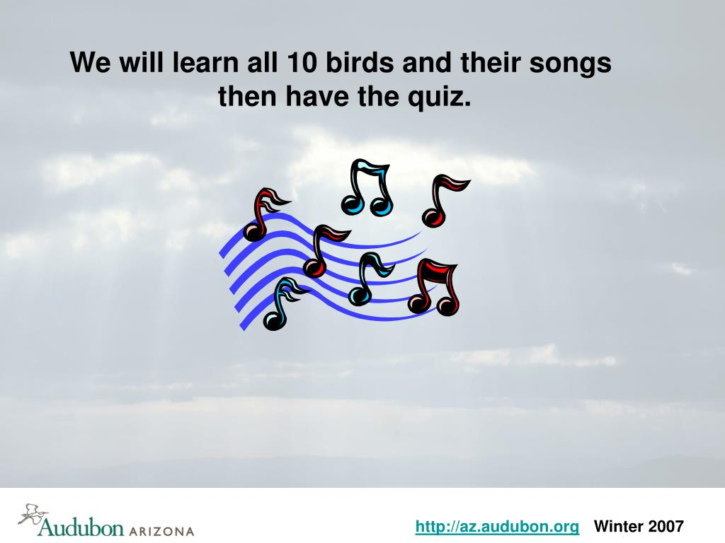 We will learn all 10 birds and their songs