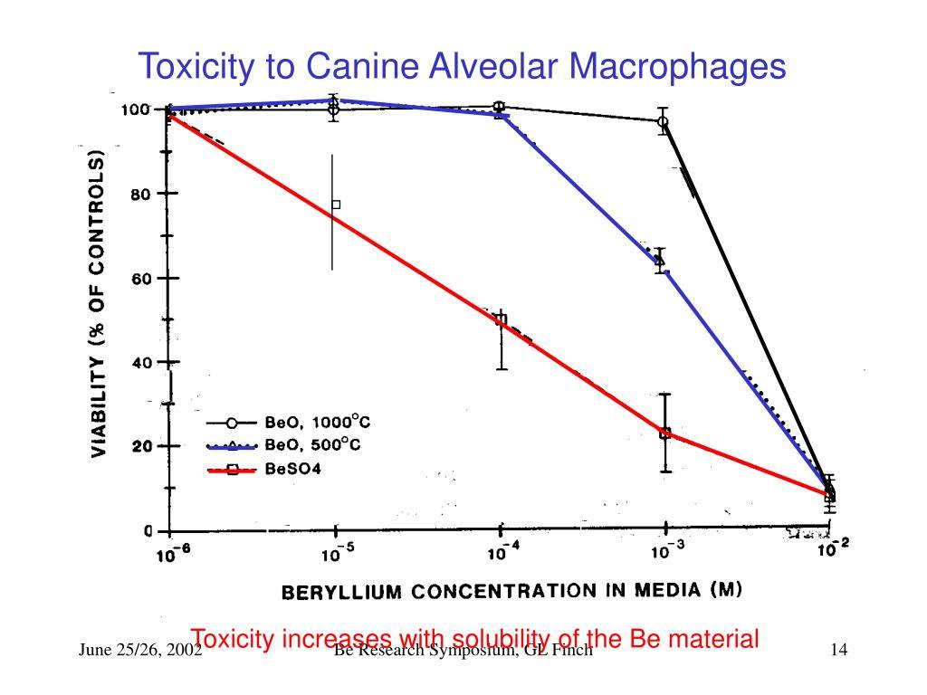 Toxicity to Canine Alveolar Macrophages