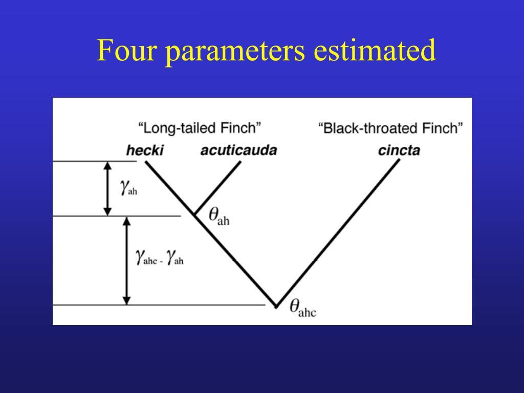 Four parameters estimated