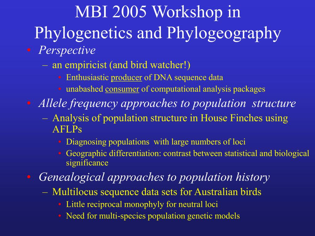 mbi 2005 workshop in phylogenetics and phylogeography l.