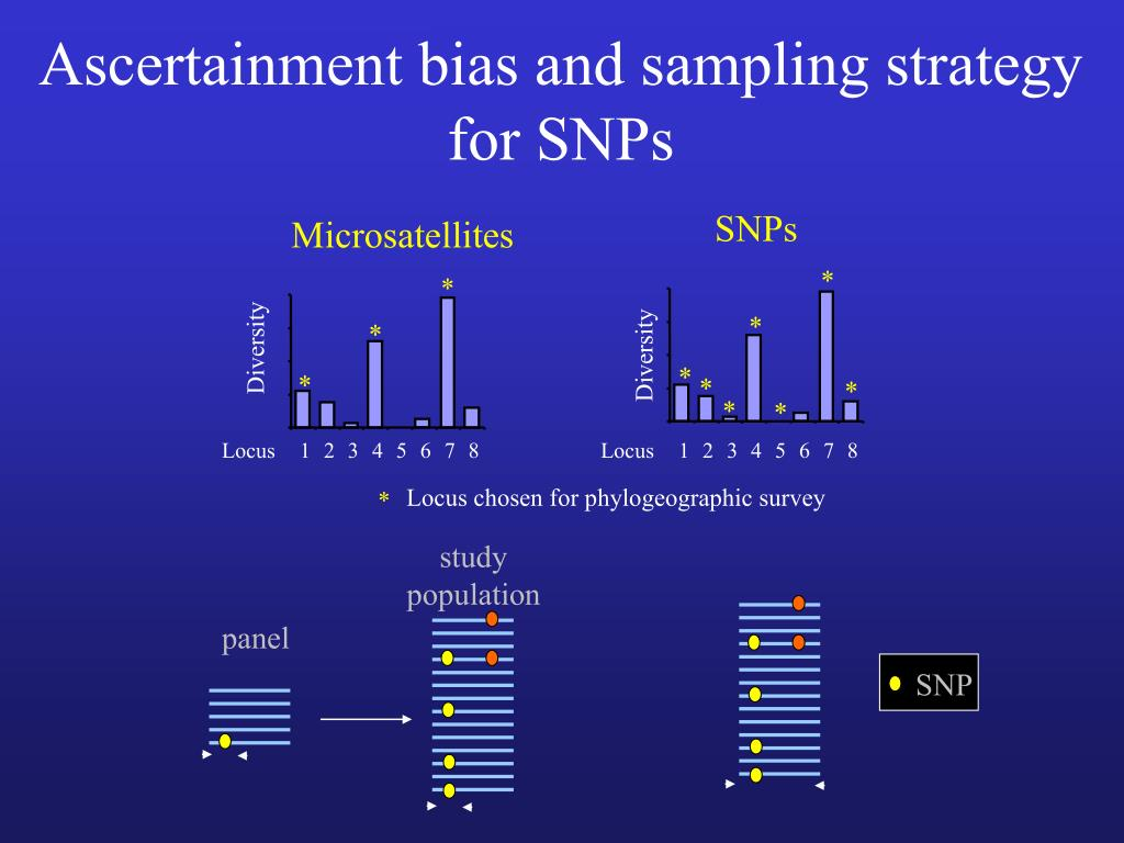 Ascertainment bias and sampling strategy for SNPs