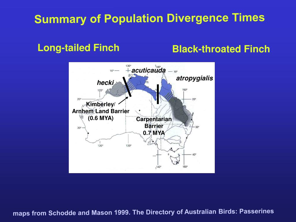 Summary of Population Divergence Times
