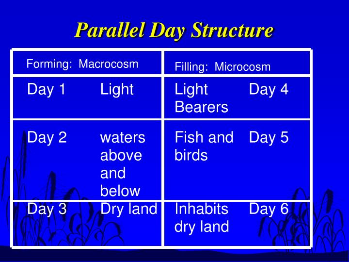 Parallel Day Structure