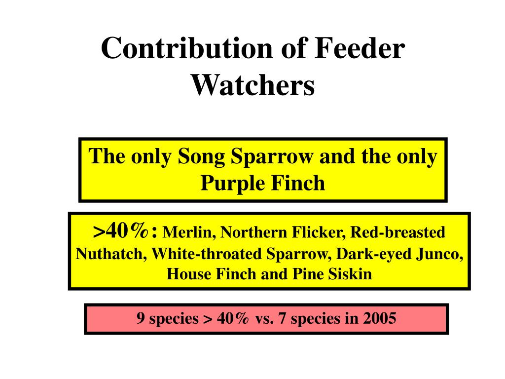 Contribution of Feeder Watchers
