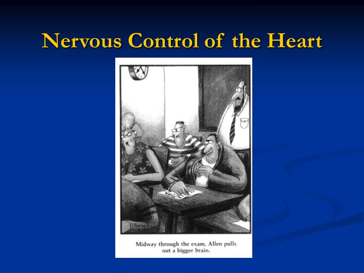 Nervous control of the heart