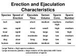 erection and ejaculation characteristics