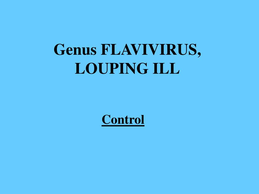 Genus FLAVIVIRUS, LOUPING ILL