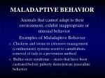 maladaptive behavior