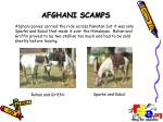 afghani scamps