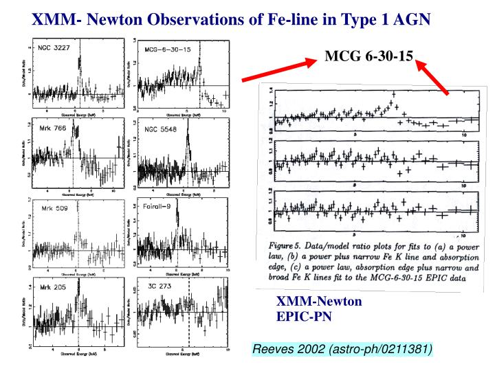 XMM- Newton Observations of Fe-line in Type 1 AGN
