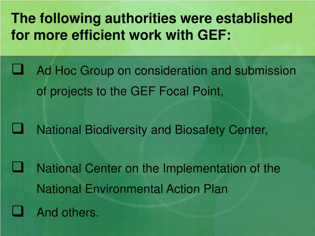 The following authorities were established for more efficient work with GEF