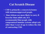 cat scratch disease17