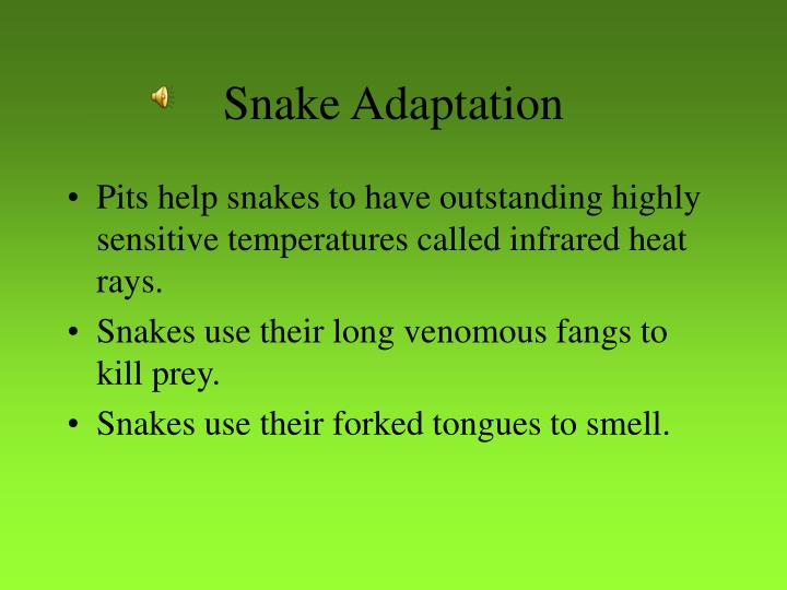 Snake adaptation