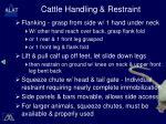 cattle handling restraint