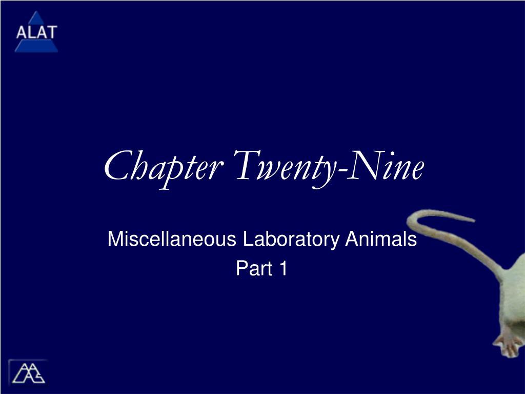 chapter twenty nine l.