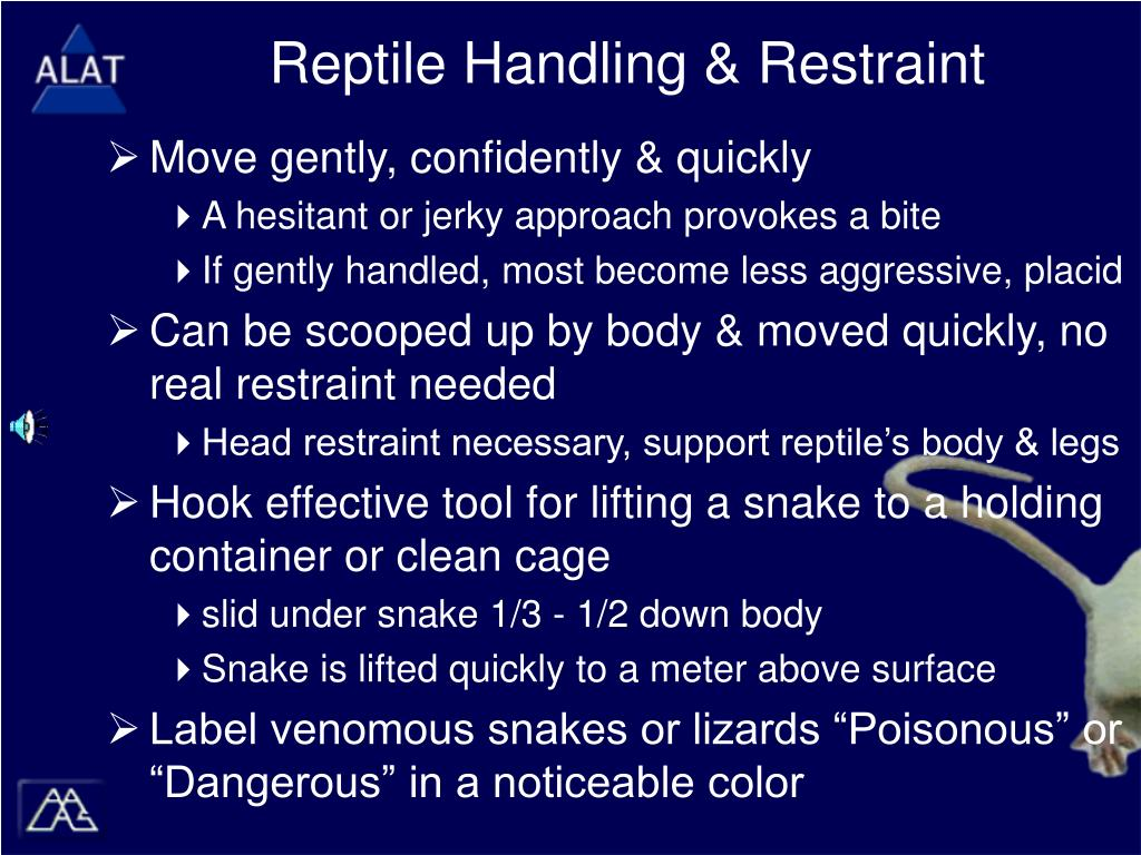 Reptile Handling & Restraint
