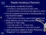 reptile handling restraint
