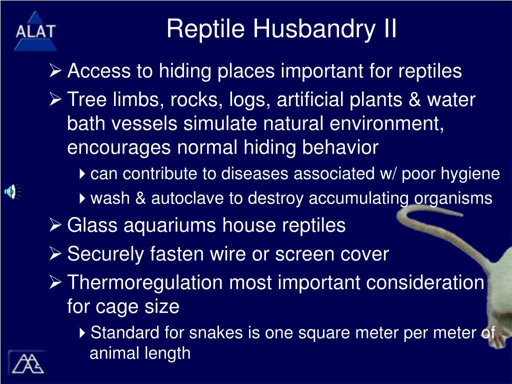 Reptile Husbandry II