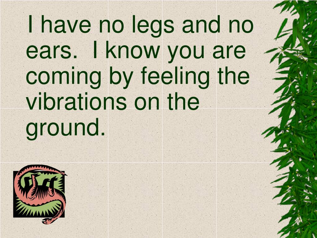I have no legs and no ears.  I know you are coming by feeling the vibrations on the ground.