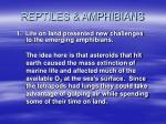 reptiles amphibians5