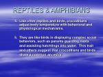 reptiles amphibians68