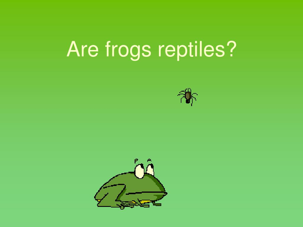 Are frogs reptiles?