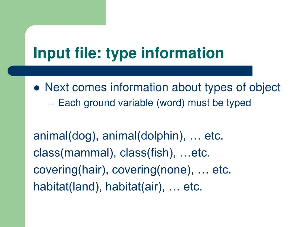 Input file: type information