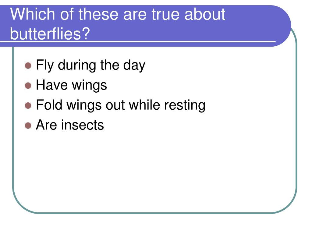 Which of these are true about butterflies?