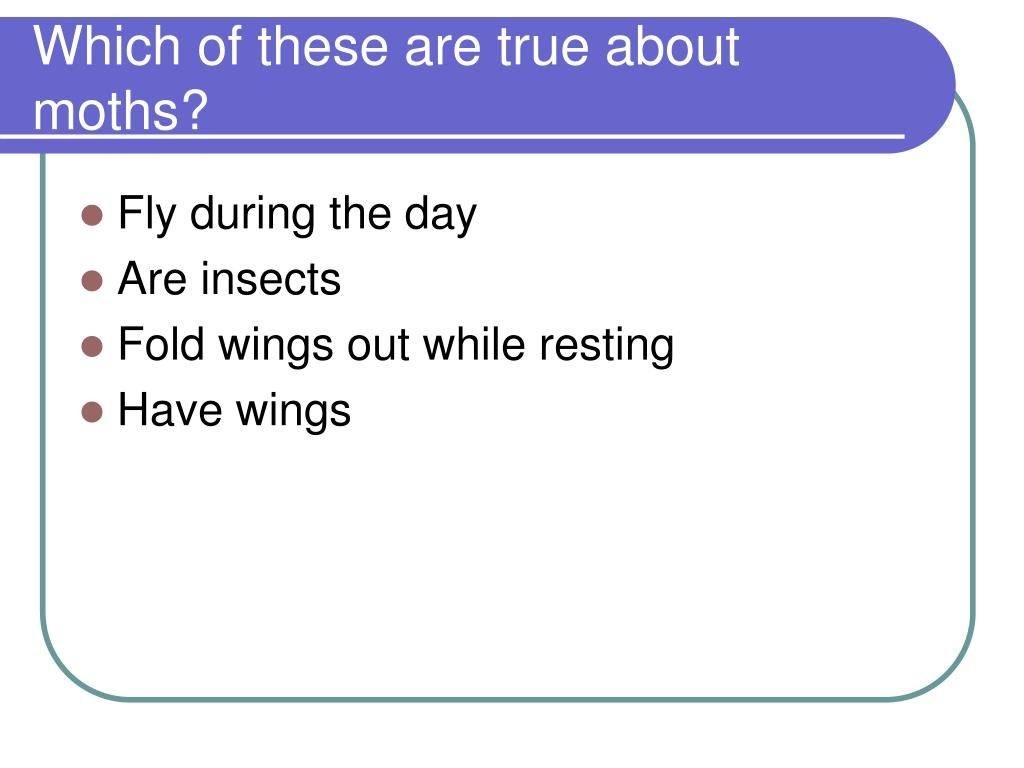 Which of these are true about moths?