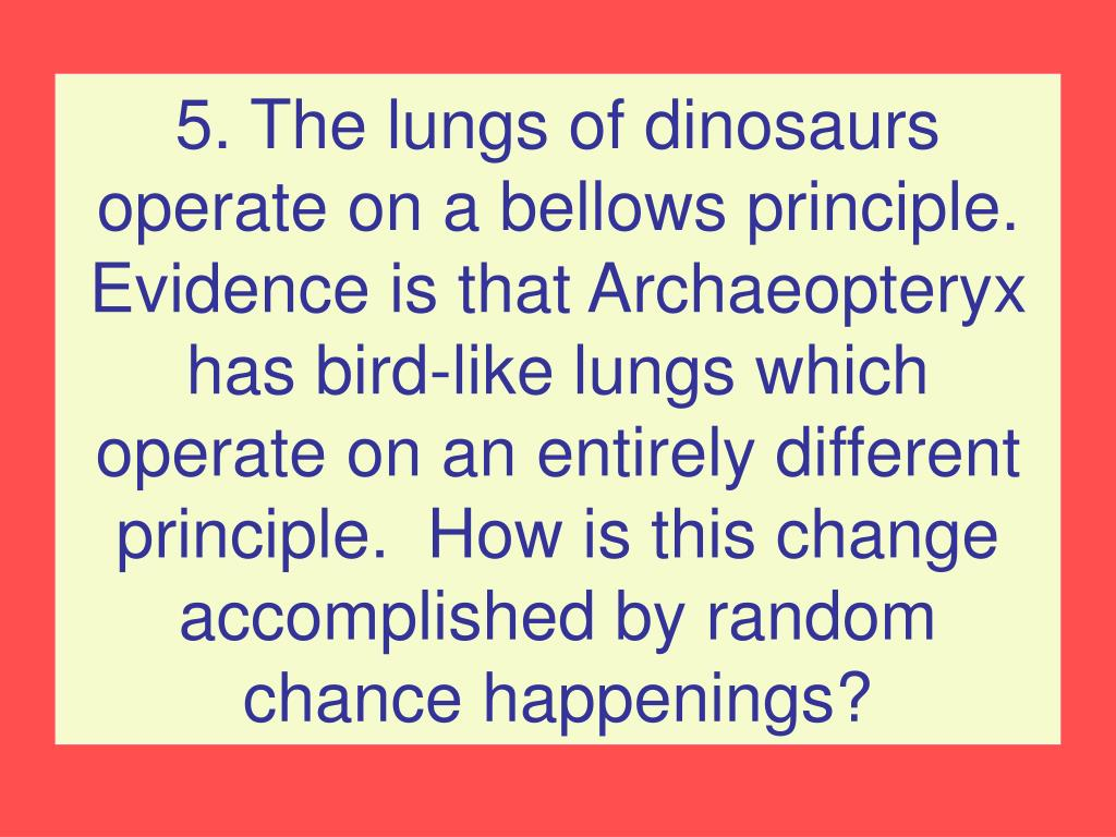 5. The lungs of dinosaurs operate on a bellows principle.  Evidence is that Archaeopteryx has bird-like lungs which operate on an entirely different principle.  How is this change accomplished by random chance happenings?