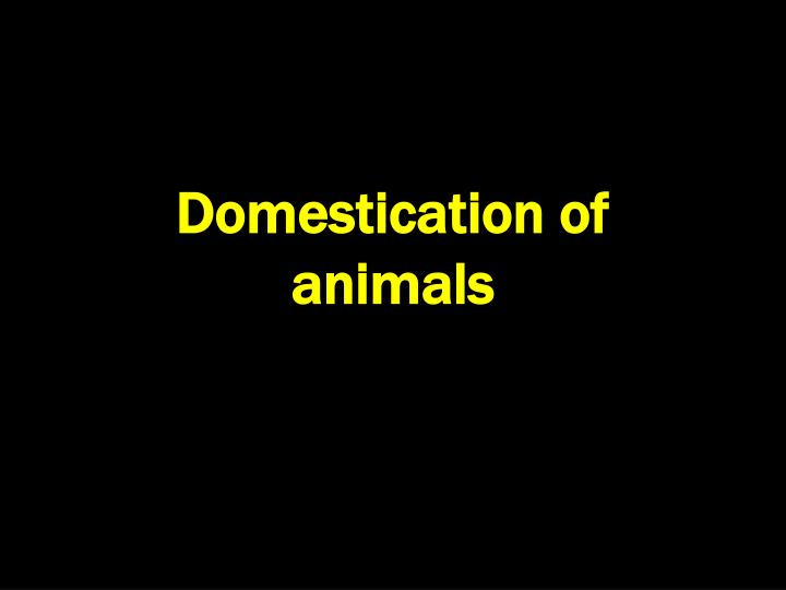 domestication of animals n.